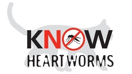 Heartworm Disease